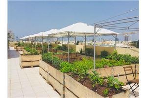 חלל עבודה מלון והאב  בתל אביב
