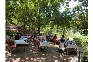 חלל עבודה Botanic-Hub  בירושלים
